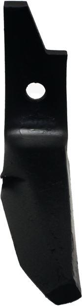 Image sur Dent rotative gauche